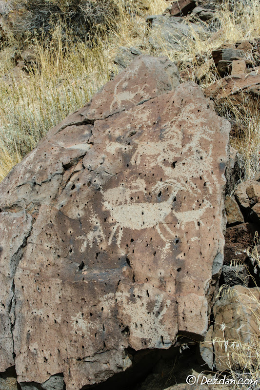 More bighorn sheep petroglyphs.