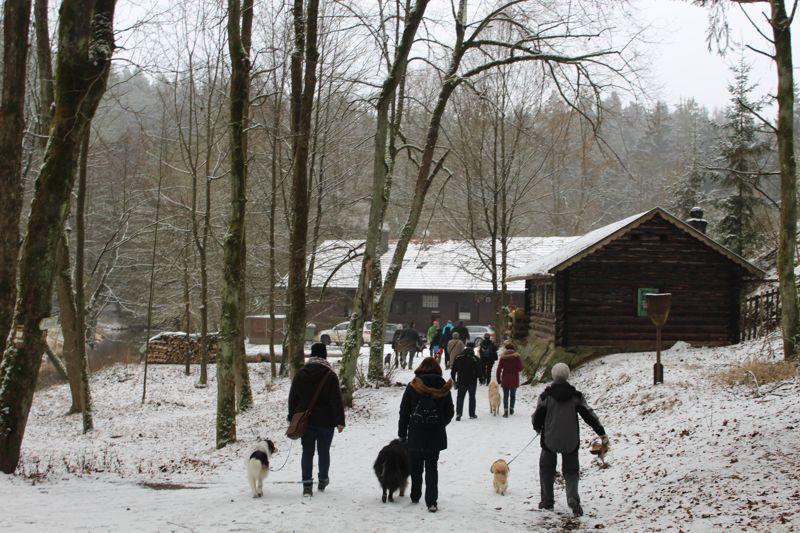 01. Januar 2016: Neujahrswanderung ins Waldnaabtal - IMG_1527.JPG