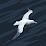 Nupur Kashikar's profile photo