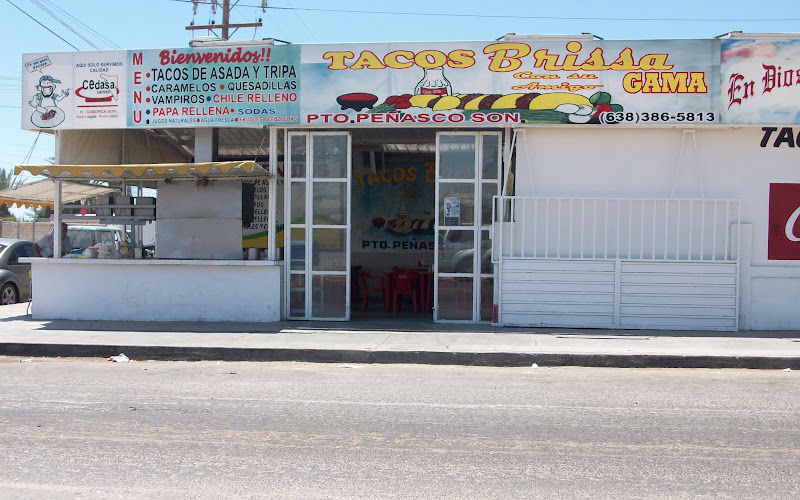Tacos Brissa Rocky Point