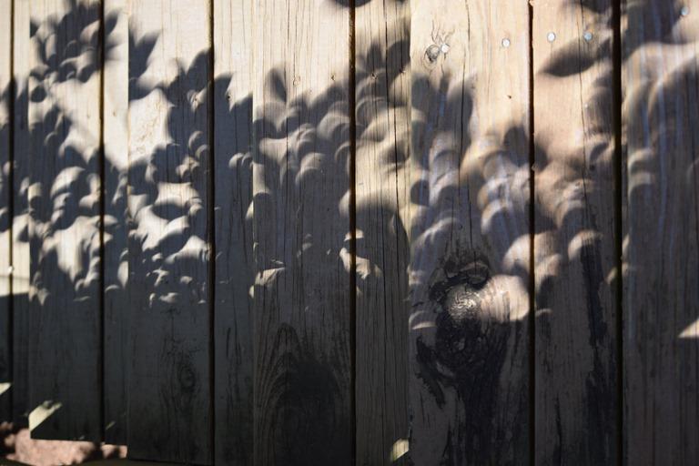 [Crescent+Shadows-2%5B8%5D]