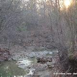 01-05-13 Arbor Hills Nature Preserve - IMGP3985.JPG