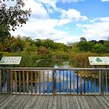 Таблички со схемами и обитателями парка, река Дон, Ванкувер