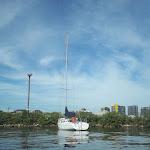 On Rozelle Bay.jpg