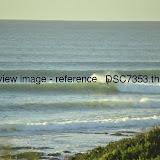 _DSC7353.thumb.jpg