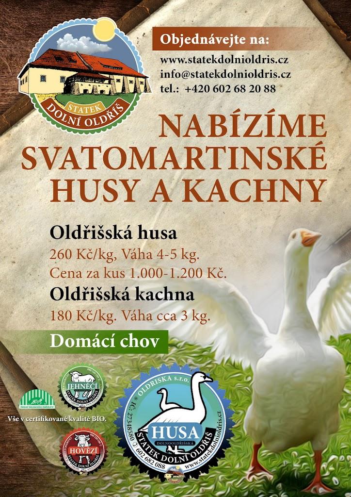 savatomartinska_hua_kachna_rijen_2013_002