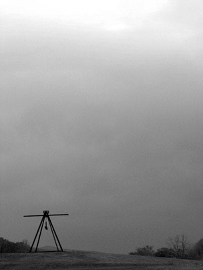 Winter Selections - IMG_9104.jpg