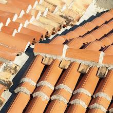 Popotniški spomladanski izlet, Istra 2007 - P0146301.JPG