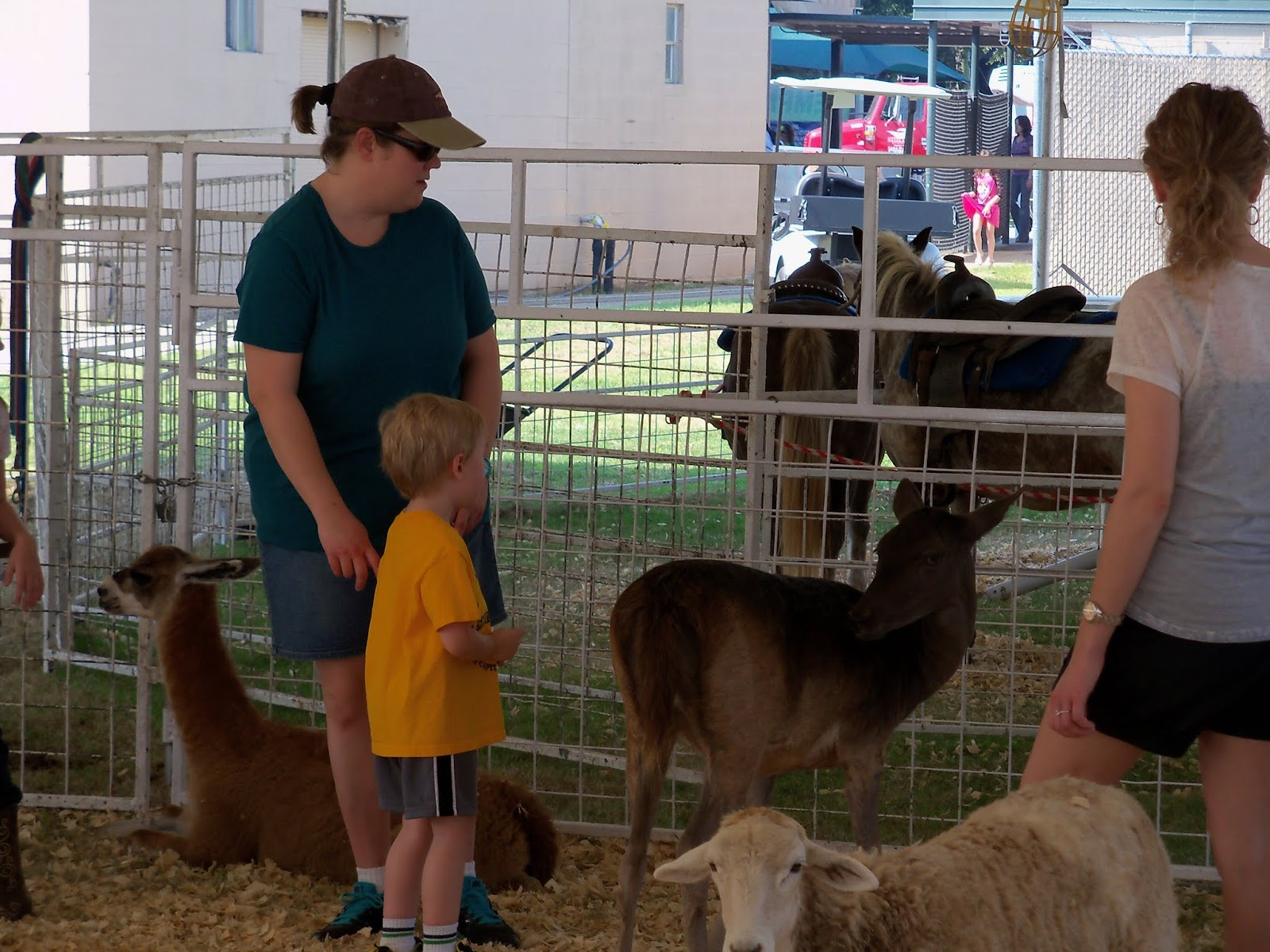 Fort Bend County Fair 2015 - 100_0189.JPG