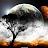 WeStayBlazin420 avatar image