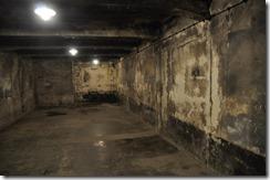 6 Auschwitz chambre à gaz
