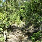 Rocky erooded section beside Mooney Mooney Creek (373183)
