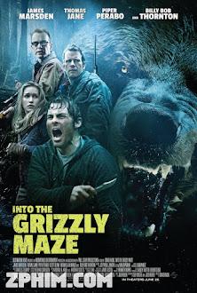 Trong Mê Cung Gấu Xám - Into the Grizzly Maze (2015) Poster