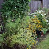 Gardening 2010, Part Three - 101_5204.JPG