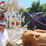 CaminandoalRocio2011_428.JPG