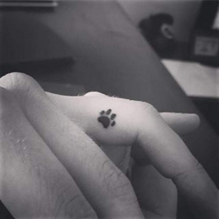 pequena_pata_de_tatuagem