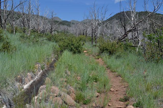 Comanche Ditch