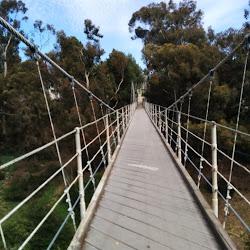 Spruce Street Suspension Bridge's profile photo