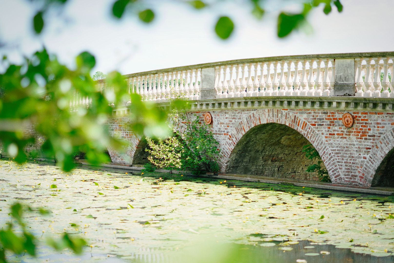 Green leaves blurred out in the foreground, framing a stately looking brick bridge over a lake.