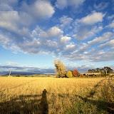 3. Tasmania