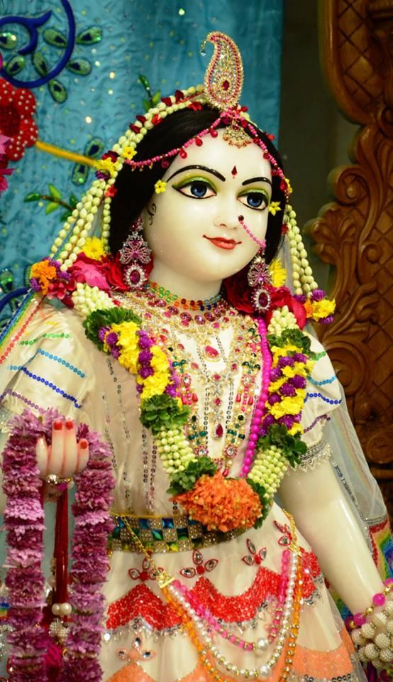 ISKCON GEV Deity Darshan 03 jan 2017 (2)