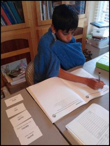 Ethan using the Supplemental Review Worksheets