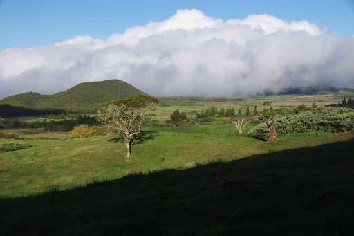 Fin de la rando, dans la plaine des Cafres.