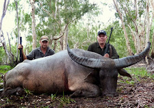 This massive big old bull was taken by Dennis Young from Australia, in December. This bull has everything...great mass and width.