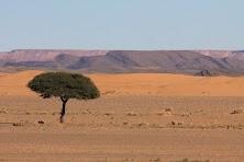 Maroko obrobione (40 of 319).jpg