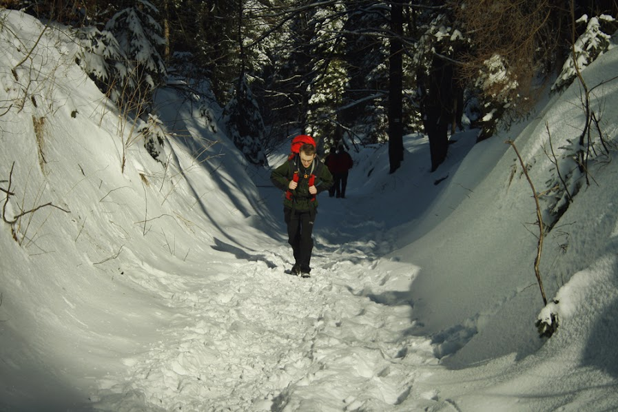 Szlak na Przełęcz u Panienki