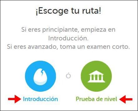 Abrir mi cuenta Duolingo - 539