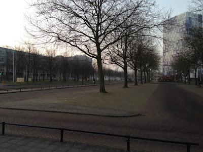 Een laatste beeld P-Heidelberglaan met bomen