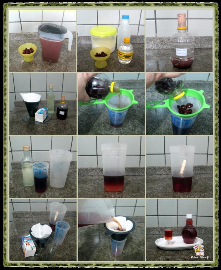 Suco e licor de tamarindo 10