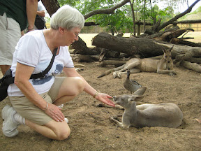 Mom and a kangaroo