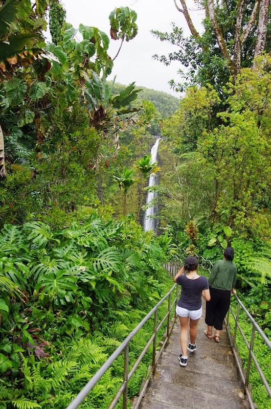 06-23-13 Big Island Waterfalls, Travel to Kauai - IMGP8863.JPG