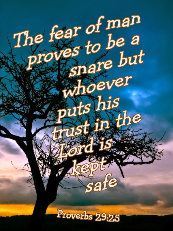 10 Motivational Quotes From The Book Of Proverbs   Elijah Notes