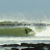 _DSC8835.thumb.jpg