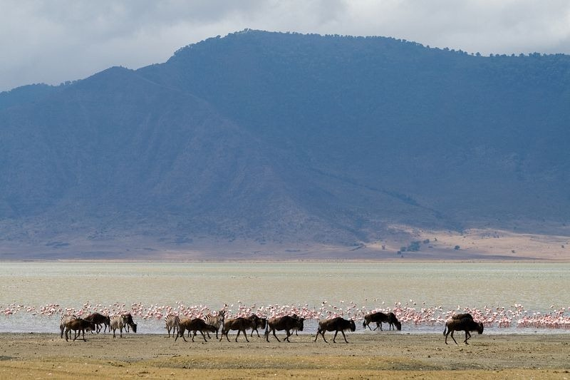 lake-magadi-1