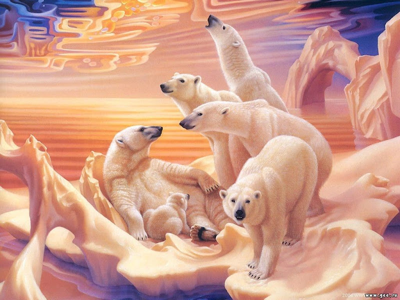 Land Of Bears, Magical Landscapes 2