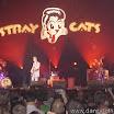 20080903 Stray Cats 002.jpg
