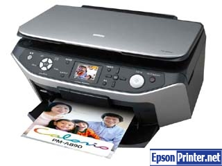 How to reset Epson PM-A890 printer