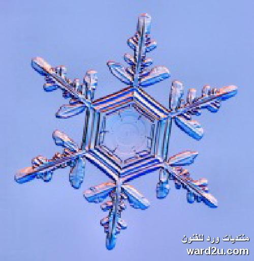 بلورات الثلج فى تكوينات هندسية رائعة
