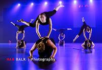 Han Balk Voorster Dansdag 2016-4310-2.jpg