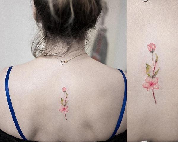 esta_flor_de_cerejeira