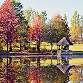 Autumn Reflections by Tracey Zettler - Landscapes Prairies, Meadows & Fields ( autumn, peace, reflections, lake, quiet, landscape, natural, colours )