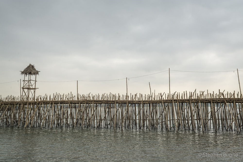 kampong-cham-bamboo-bridge-6