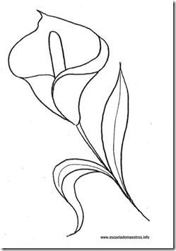 11flores primavera colorear  (45)