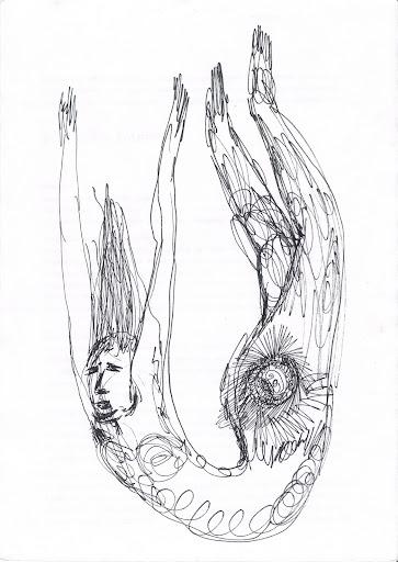 icarus sans wings ~ frank waaldijk