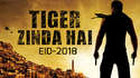 Katrina Kaif, upcoming movies in 2017, upcoming movies in 2018, Salman Khan new movie full star cast umd New Upcoming hindi movie Tiger Zinda Hai Poster
