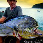 TOBAGO Big Game, collection season 2010